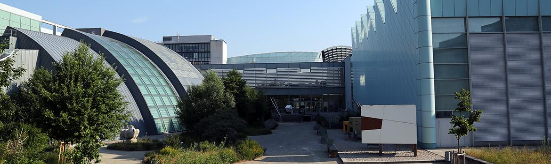 Architektur_Garten
