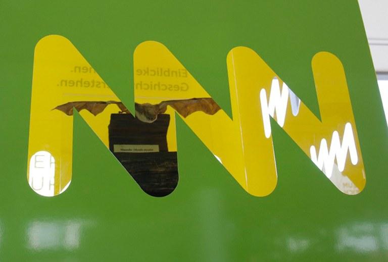 © NÖ Museum Betriebs Gmbh, Fotos: Landessammlungen Niederösterreich